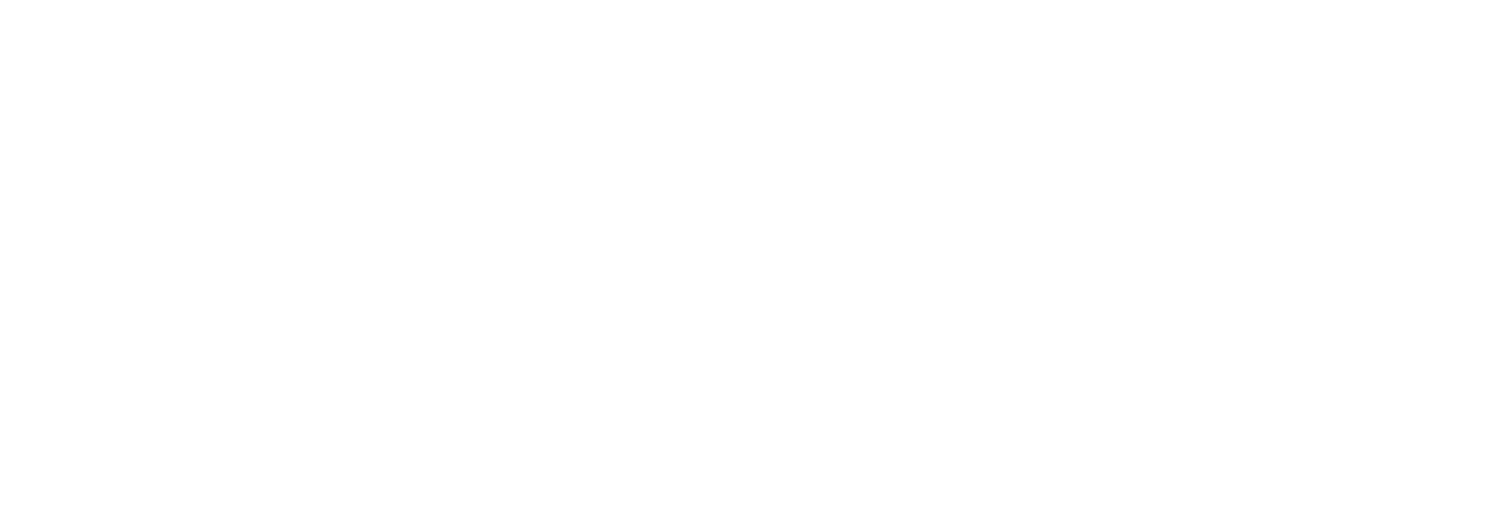 The Bridge 2019